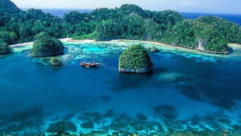 Pesona Bawah Laut Amazon lautan dunia