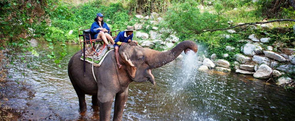 Traveling Seru ke Thailand