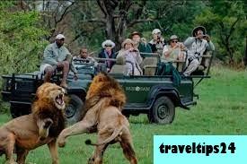 10 Tempat Wisata Paling Aman untuk Dikunjungi di Afrika